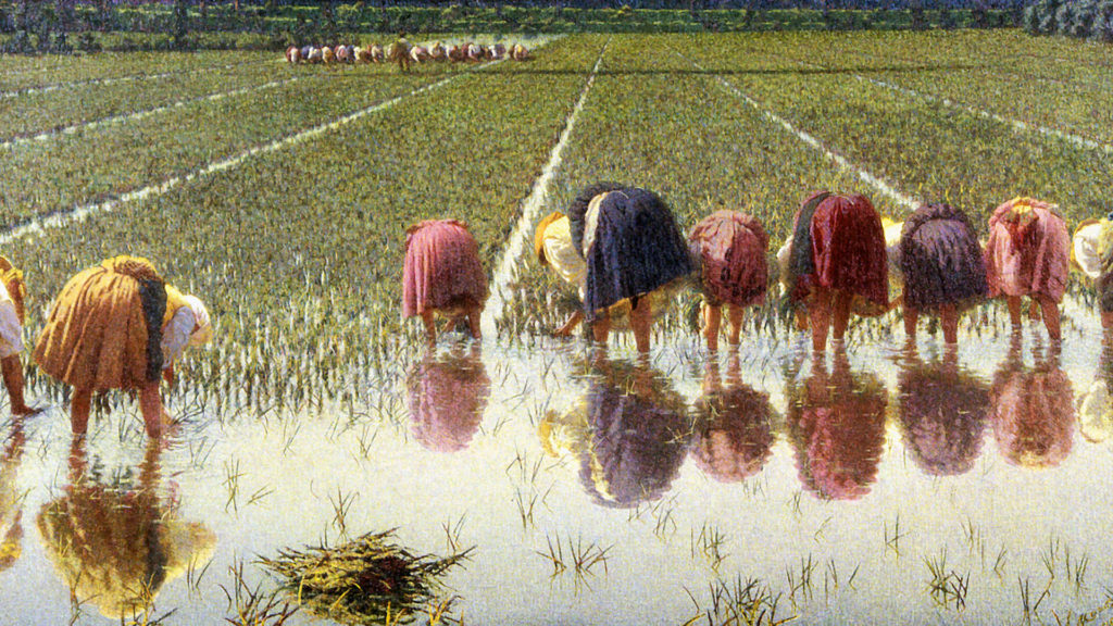 angelo morbelli-The Rice Weeders_1920x1080
