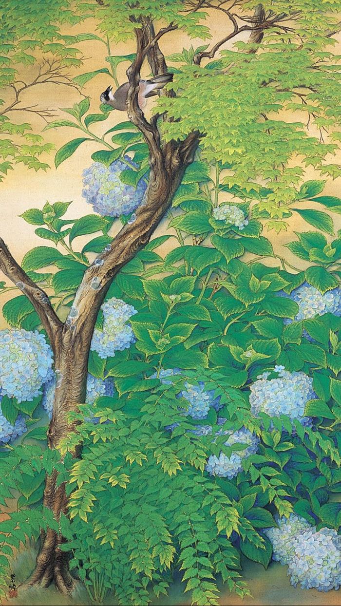 榊原紫峰 Sakakibara Shiho / 青梅 左