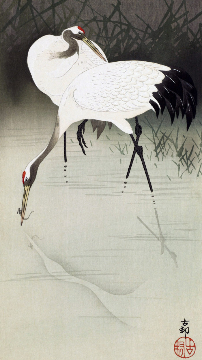 Ohara Koson - Tanchoduru 1080x1920