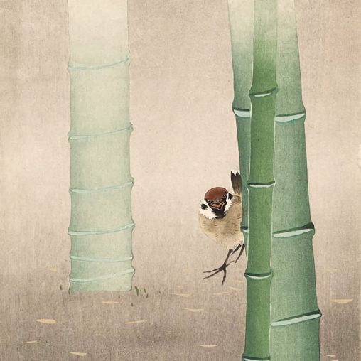 Ohara koson - Sparrow and Bamboo d