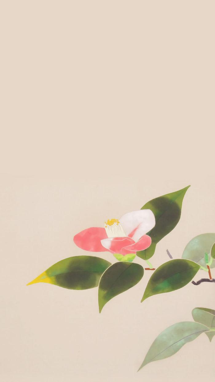 Uemura Shoko - Tsubaki 1080x1920