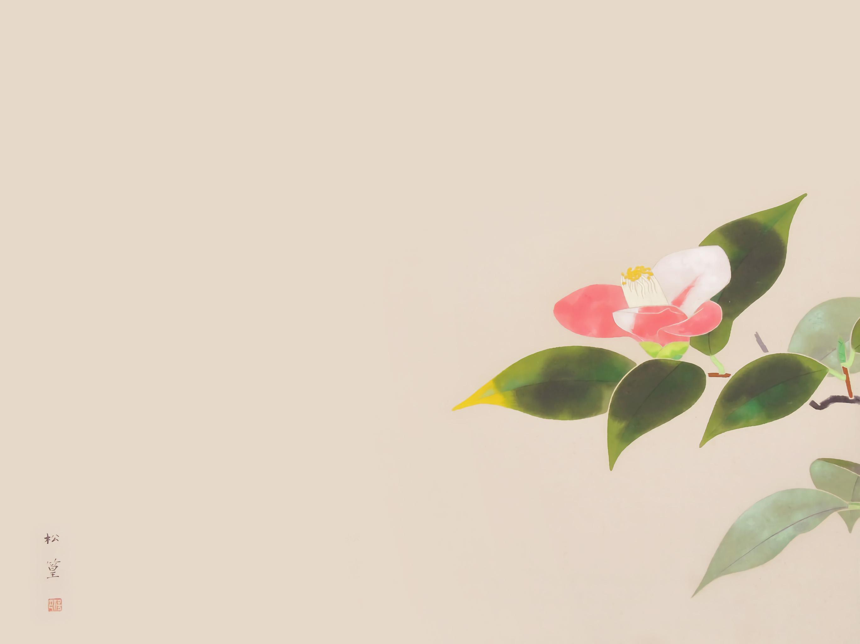 Uemura Shoko - Tsubaki 2732x2048
