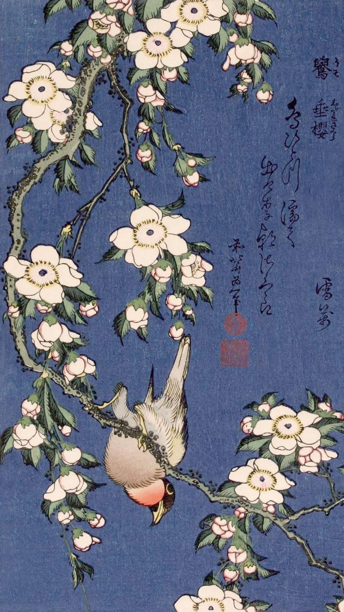 Katsushika Hokusai - Uso ni shidare sakura 1080x1920
