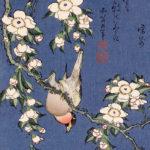 葛飾北斎 / 鷽に垂桜
