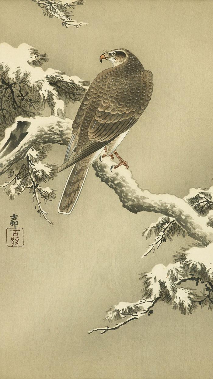 小原古邨 松に鷹 Ohara Koson - Matsu ni taka 1080x1920