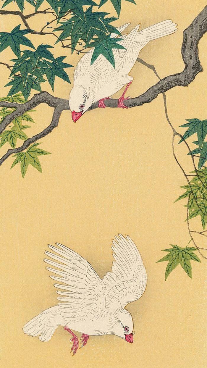 小原古邨 もみじに白文鳥 Ohara Koson - Momiji ni hakubuncho 1080x1920