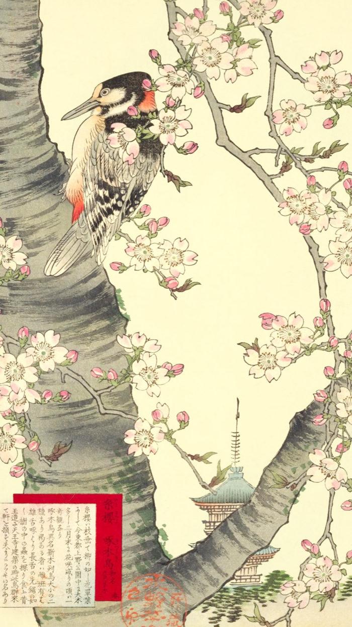楳嶺花鳥画譜 糸桜・啄木鳥 kono bairei-gafu itozakura kitsutsuki 1080x1920