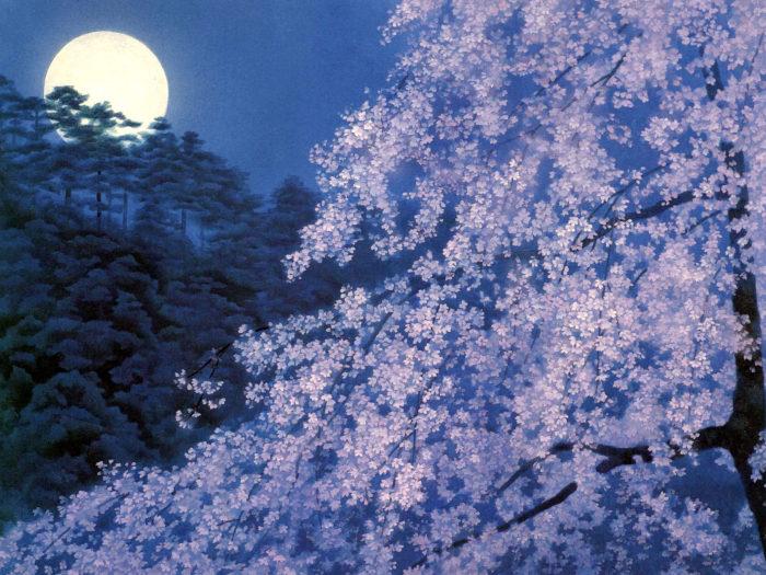 東山魁夷 宵桜 Higashiyama Kaii - yoizakura 2732x2048