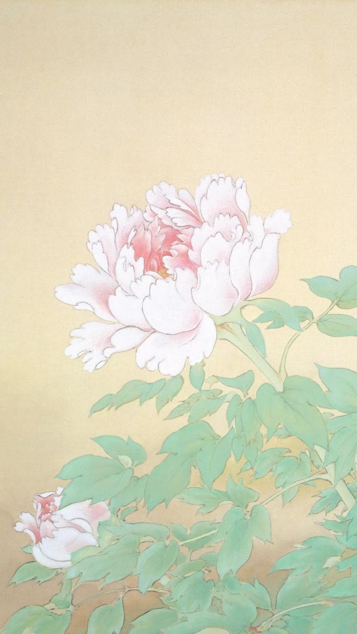 榊原紫峰 冨貴草 Sakakibara Shiho - Fuukigusa 1080x1920