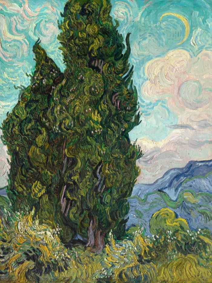 Vincent van Gogh - Cypresses 2048x2732