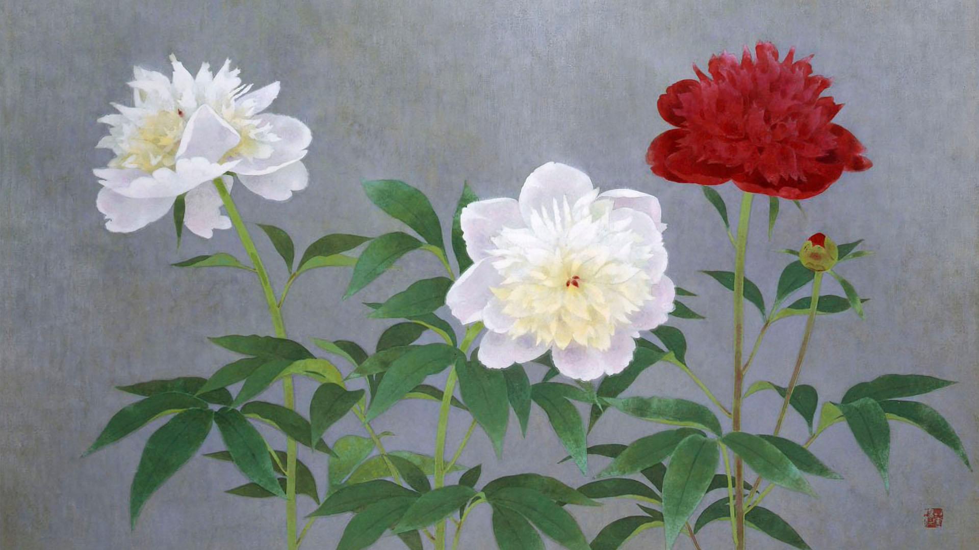 Yamaguchi Kayo - Shakuyaku 1920x1080