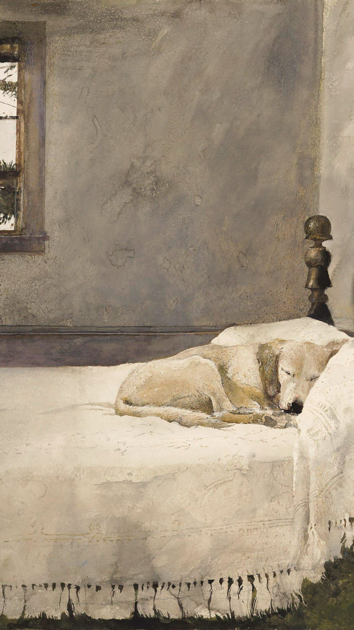 Andrew Wyeth - Master bedroom 1080x1920