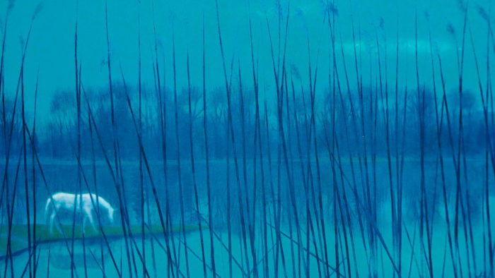 Higashiyama Kaii - Mizube no asa 1920x1080 2