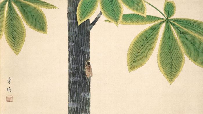 Omoda Seiju - Semi 1920x1080
